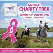 Annual Charity Trek for Breast Cancer Research