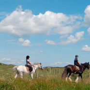 1 & 2 Day Horse Riding Packages
