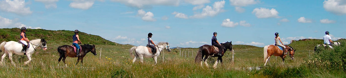 horse trekking packages